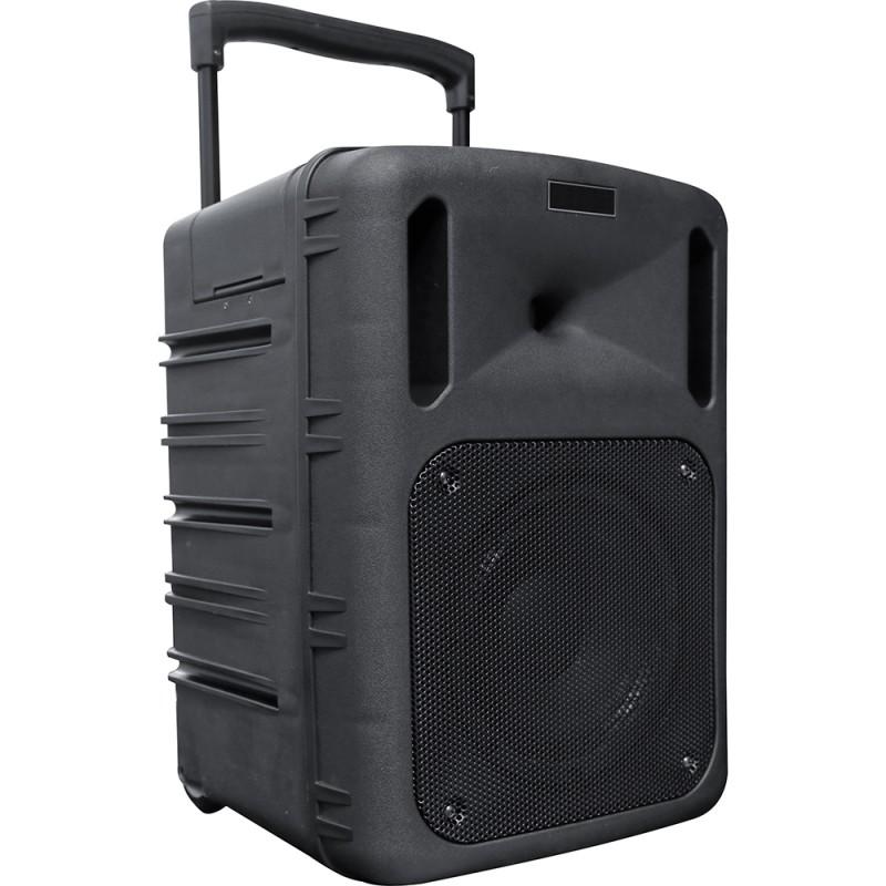 BST PWA200SL Stand-alone Speaker Enclosure – 300 W Stand-alone Speaker Enclosure – 300 W