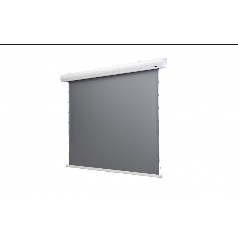 Celexon Dynamic Slate ALR 1000008117 Dynamic Slate ALR HomeCinema High Contrast screen Tension, 221 x 124 cm, 100 inch, 16:9 Dynamic Slate ALR HomeCinema High Contrast screen Tension, 221 x 124 cm, 100 inch, 16:9
