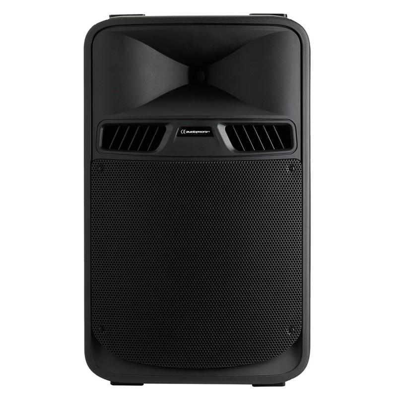 Audiophony SR15A 2-way self-powered speaker – Bass reflex 2-way self-powered speaker – Bass reflex